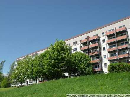 Renovierte 3-Raum-Wohnung zum TOP-PREIS