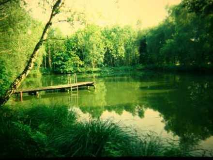 Traum-Wochenend-Grundstück mit Badesee in Groß Ippener Oldenburg (Kreis)