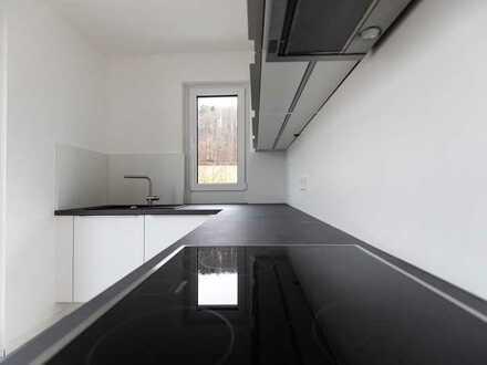 **Mönsheim - Exklusive 2-Zimmer-Penthouse-Mietwohnung (Neubau) im Mitteltal am Grenzbach**