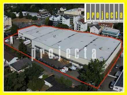 PROJECTA: MÜHLHEIM | 4470 m² Speditionslager | 16 Anlieferungstore | Sprinkleranlage | BMA