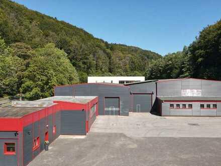 abgeschlossene Gewerbehalle/Lagerhalle 150 m2 zu vermieten