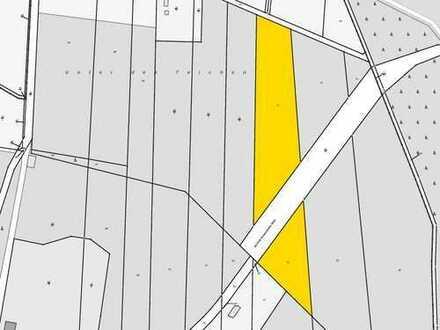 Wald- und Landwirtschaftsflächen bei Groß Schacksdorf