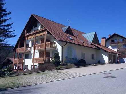 Wohnung im Schwarzwald / Todtmoos Luftkurort