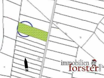 Freizeitgrundstück: Forstwirtschaftliche Nutzfläche nördlich von Peißenberg