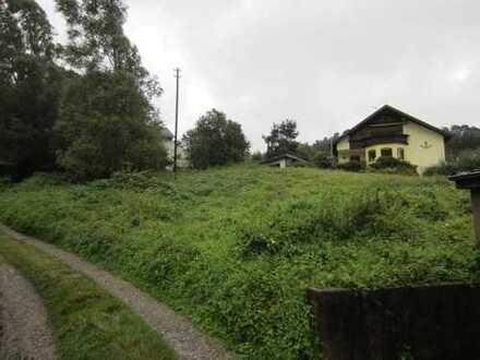 Bauplatz für 2 EFH in Schönau Altneudorf, 653qm und 615qm sonnig und ruhige Lage