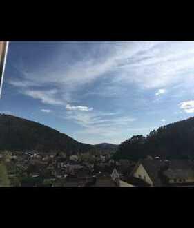 Schöne, geräumige zwei Zimmer Wohnung in Südwestpfalz (Kreis), Hinterweidenthal