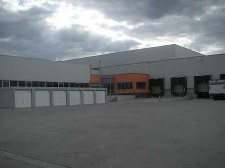 """""""BAUMÜLLER & CO."""" - 5.000 m² Hallenfläche - ebenerdige Zufahrt + Rampenandienung"""