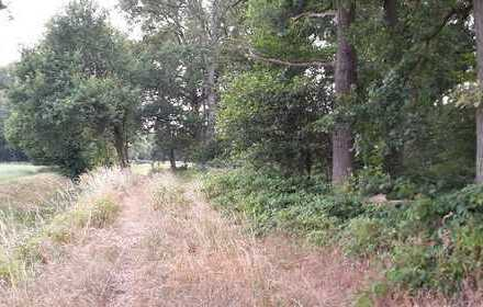 Weidefläche mit Wald- und kl. Ackeranteil: -- VERKAUFT !! --