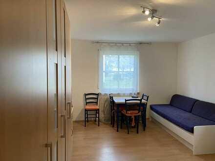 Stilvolle, gepflegte 1-Zimmer-EG-Wohnung mit Terrasse und EBK in Karlsruhe