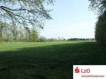 Interessante landwirtschaftliche Flächen in Bad Zwischenahn -Fintlandsmoor zu verkaufen