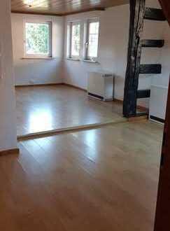 Besondere Wohnung im schönen Sachsenheim-Ochsenbach