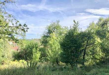 Grundstück für 4 Häuser in toller Naturlage zur Wohnbebauung in Streitberg