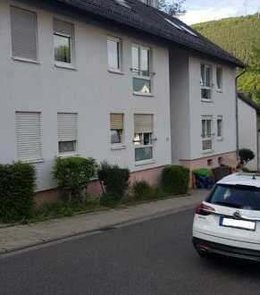 Schöne 2 ZKB Wohnung Beerentalstr. 18 in Lambrecht 252.02