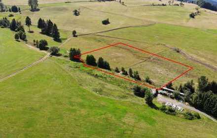 Schönes Stück Ackerland / Feld mit Bachlauf: 8.120 m² in Breitenbrunn