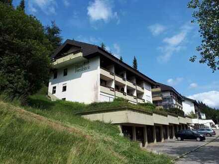 Reserviert - Provisionsfreie, modernisierte 1-Zimmer-Wohnung mit Balkon und EBK in Todtmoos