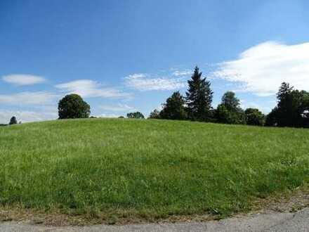 Landwirtschaftliches Grundstück am Butterberg