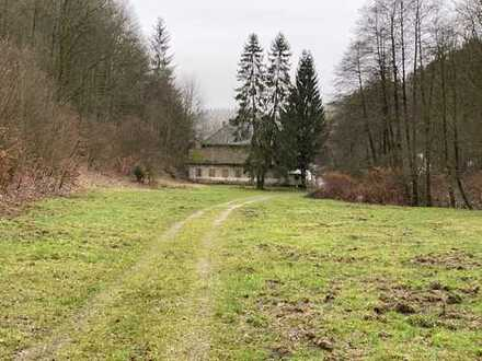 Traumhaftes Baugrundstück mit Grünland, Hößrichsmühle Sonneberg