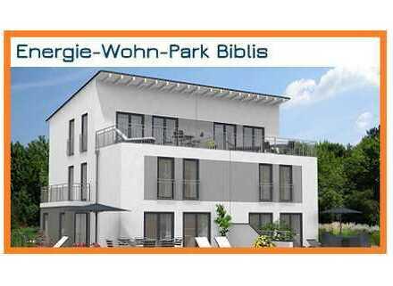 Wohnen in der Plusenergiehaus-Siedlung in Biblis