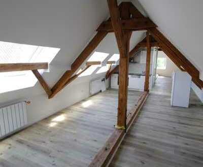 Wunderschöne Wohnung in Bad Buchau