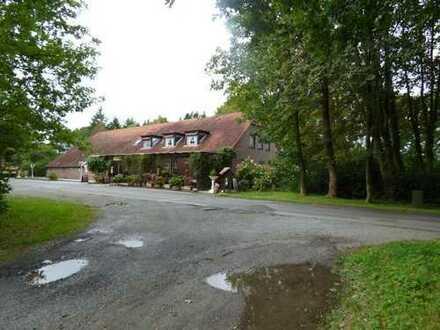 Friedeburg 5032 - Forsthaus-Resthof - plus Weideland umgeben von Wald