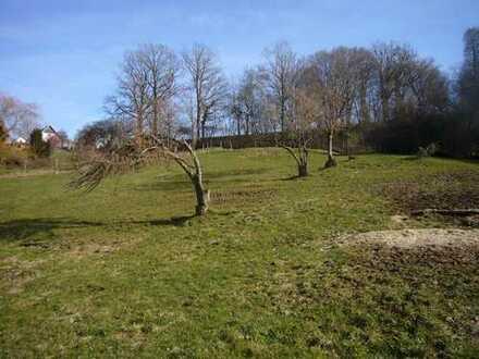Hügeliges, sonniges Wiesen-Grundstück am Ortsrand