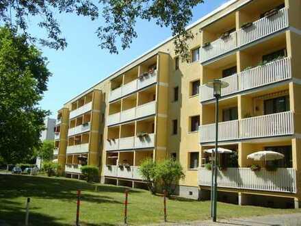 Sonnige 4-Zimmer-Wohnung am grünen Buga-Park