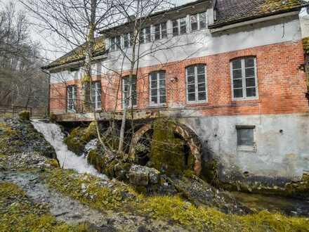 Charmantes Liebhaberobjekt mit Mühlrad des frühen 20. Jahrhunderts