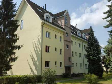 Renovierungsbedürftige 2-Zimmer-Wohnung im grünen Wittenau