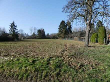 Esslingen-Zell: Attraktive landwirtschaftliche Fläche - Ackerland in guter Lage