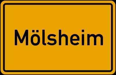 Mölsheim Top-Lage EFH-Neubau ab 459.000,00 € mit Grund