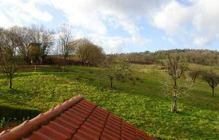 Vier-Zimmer-Maisonettewohnung mit Garten, Haus im Haus in Birkenau OT, N-L