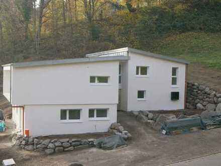 Wohnen und Arbeiten, Fischbachtal (1-Familienhaus mit Einliegerwohnung)