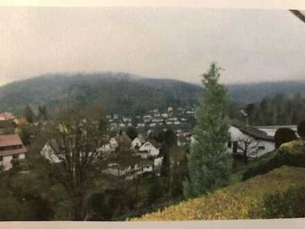 Schöne 2-Zimmer-Wohnung mit Terrasse in Heidelberg-Ziegelhausen