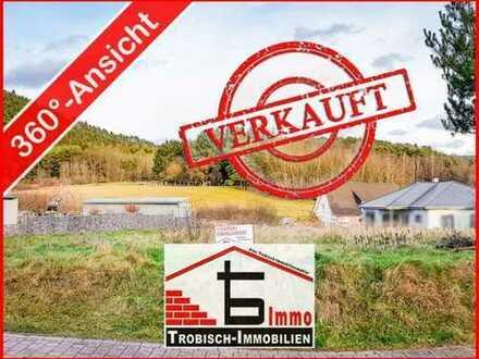 VERKAUFT! Bauplatz mit Blick auf Wiesen und Wald - Fischbach   Trobisch-Immobilien