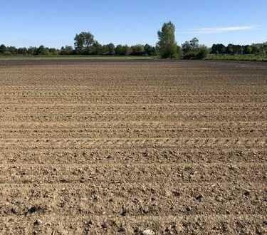 Salzkotten Verne 12.500 m² Landwirtschaftliche Fläche