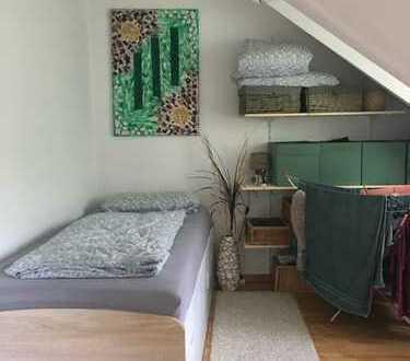Günstige, wunderschöne 2-Zimmer-Dachgeschosswohnung mit Balkon in Burkhardtsdorf
