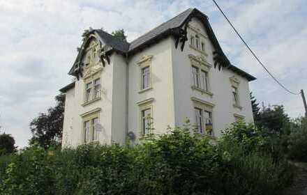 Hochparterre - 1 1/2-Raum-Wohnung in denkmalgeschützter Villa