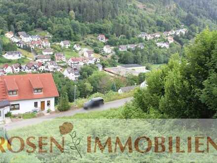 Baugrundstück in Schönau mit traumhaftem Blick