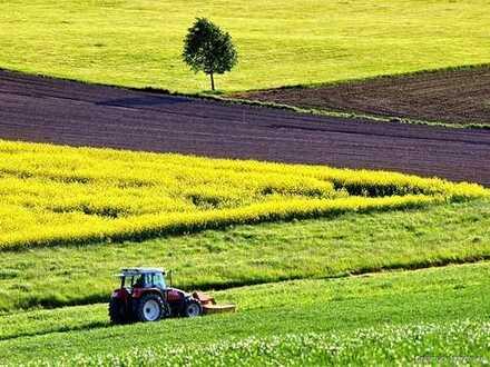 Ackerland in Büdingen - Eckartshausen zu verkaufen - 3.380m² - Ackerzahl 75