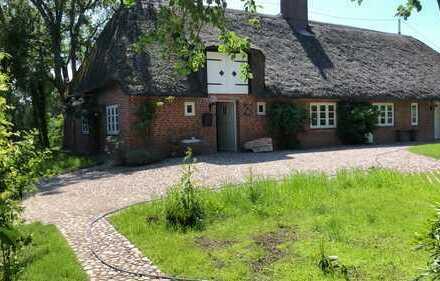 Traumhaftes Haus mit Reetdach auf einer Warft in Alleinlage unweit der Nordsee