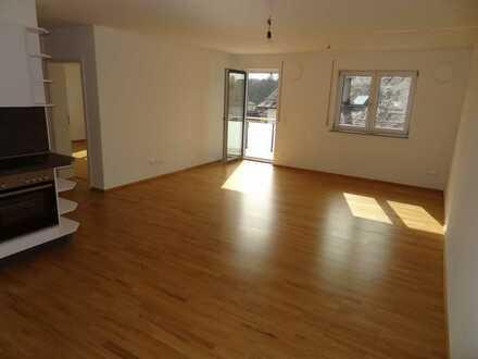 KfW55: Moderne, geräumige Wohnung in begehrter Lage am Regen