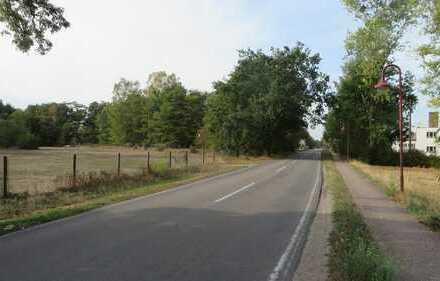 Großzügiges Grundstück für Wohnbebauung in ruhiger ländlicher Randlage von Thießen