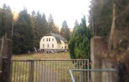 Zweifamilienhaus in Alleinlage am Waldrand - Aue
