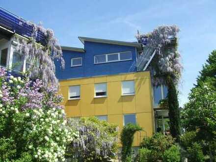 möbliert 1 Zimmerwohnung im Design + Greebuildinghaus mit biologischer Ausstattung