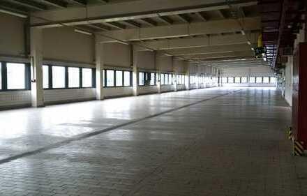Sirius Business Park Heidenheim, ca. 2.880 m² Produktionsfläche zu vermieten