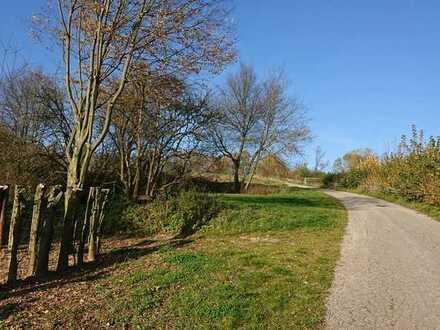 Schönes Grundstück im Naturschutzgebiet nahe der Autobahn zu verkaufen, kein Bauland!