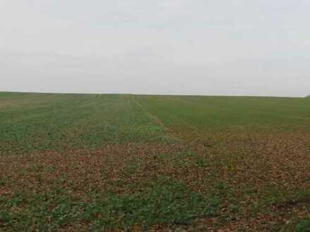 3,0480 ha Ackerland in der Gemarkung Reetz