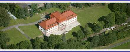 "Barockschloss aus dem 17. Jahrhundert ""Beleben Sie es neu"""