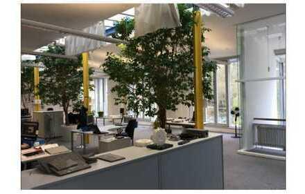 Moderne und lichtdurchflutete Büroräume in Neuburg a. d. Donau / OT Bittenbrunn