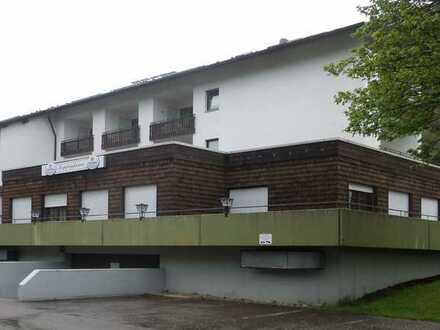 SCHWARZWALD RUHIGE MEHRGENERATIONEN-WOHNUNG ca. 410m² großeTerrasse, Furtwangen OT Neukirch